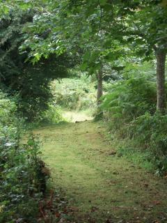 Garden Path, Clarahawn House, Kilkenny
