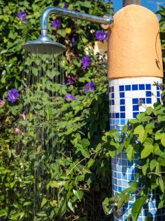 Garden detail.