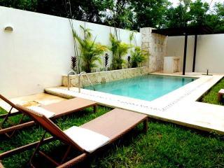 Casa Nautilus, Luxury w/private pool in Aldea Zama, Tulum