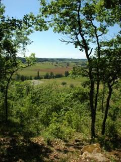 Countryside walks from the door