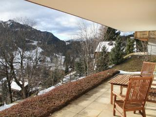 Lovely Cosy 1 Bed Apartment, Les Diablerets