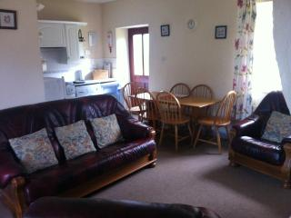 Living room and kitchen are open plan