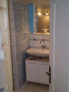 Large well fitted out shower room with toilet.