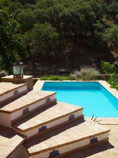 Pool from garden terrace