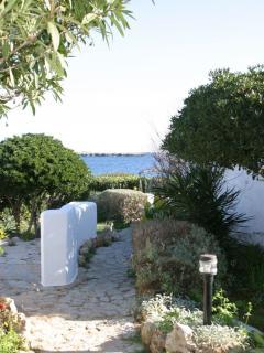 Jardín y zona acceso a la propiedad