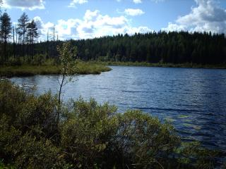 Elk Lake (1 Km) with beaver dam