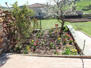 Detalle de la finca con árboles, zonas verdes y columpios para los más pequeños