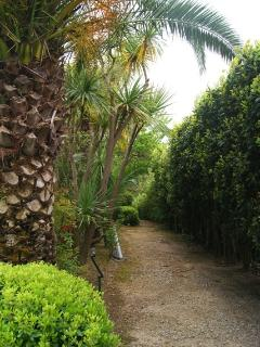 Path beside the pool to the pétanque court, ping pong table and picnic table