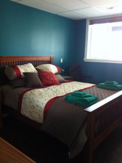 Blu room with queen bed/ walk in closet & TV