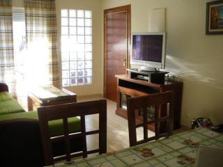Salón con sofá cama y pantalla plana