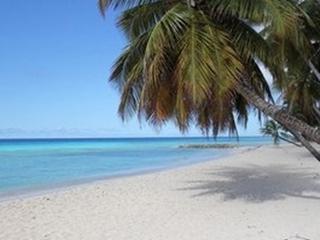 Barbados cheap Apartments 2 min to ocean beach AC, St Lawrence Gap