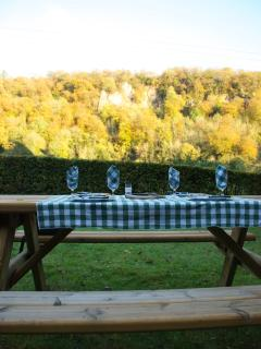 Picnic table in garden
