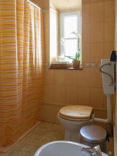 Bathroom 1 with Shower Toilet and Biday  - Casa Do Jardim