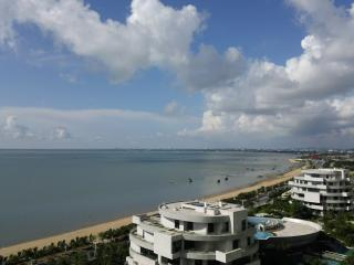 Gorgeous Sea-View 1BR Apt (Tuyu 1)