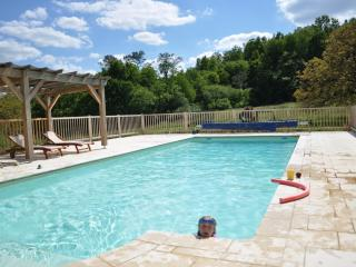 Fabulous heated swimming pool 12m x 5m with Roman end for the smaller kids