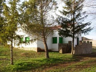 Casa Rural Las Nogueras, Esteras de Medinaceli