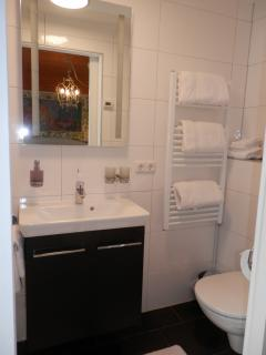 Stylish bathroom with large shower