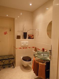 Bathroom - Salle de bains attenante