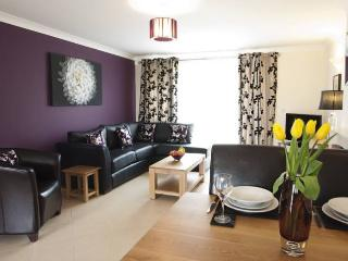 Meadow Sweet Lodge Lakeview Holiday Cottages, Bridgwater