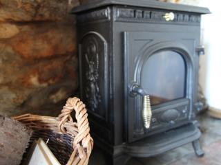 The wood burner