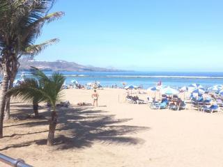 1* Linea Playa de las Canteras -WIFI