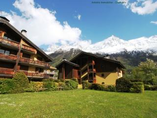 The communal garden with views of glacier and mont blanc