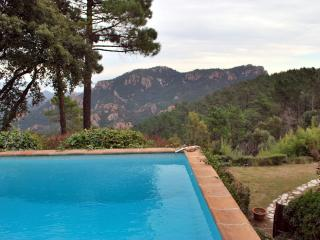Provencal Mas, pool, sea view