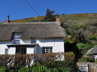 Old Cottage Characterful and 100yds from the beach, Crackington Haven