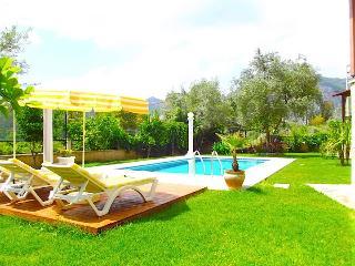 Villa Belgino, Gocek