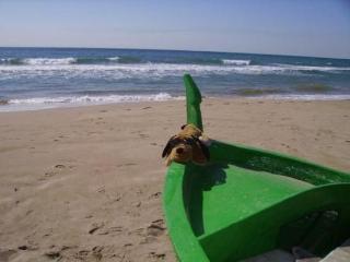 A 30 mts de la playa, Coma Ruga