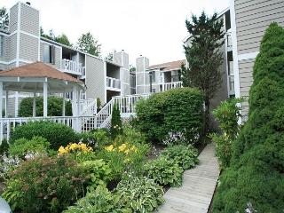 Royal Oak 236 great In-Town condo location, walk to Main Street