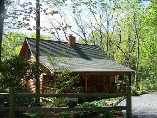 Whistle Stop is a perfect cabin in the woods, located on Appalachian Ski Mtn.