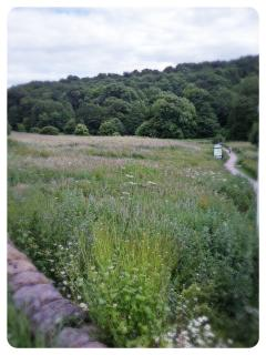 A remnant medieval landscape, Belper Parks is just two minutes walk from Strutt Cottage