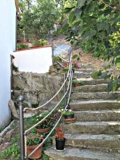 The pretty stone steps leading up the the apartment entrance