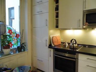 Küche mit Tiefkühlkombination und Induktionskochfeld und Backofen