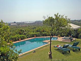 Borgo Aranci - Cedro