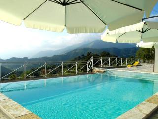 Villa Sarti, Massarosa
