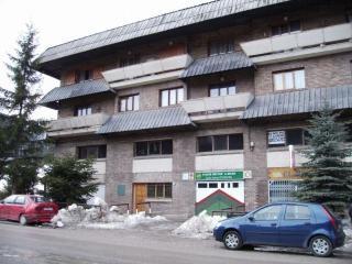 Apartamento  BOIX, 2 dormitorios en La Molina