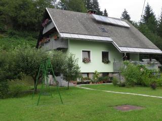 Apartma Žvan Bitnje in summer