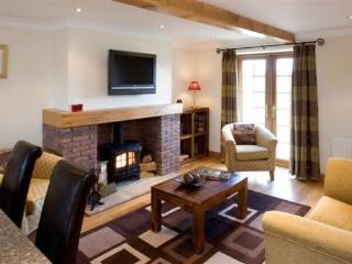 Cosy lounge with plasma TV, DVD and log burning fire