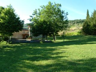 Podere Il Mago with swimming pool