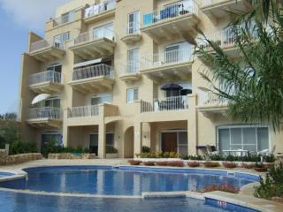 Spacious apartment with pool facing terrace, Qala