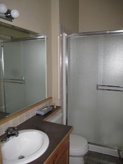 Guest en suite shower room