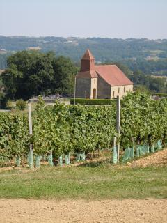 Panoramic views and vineyard walks from Chateau Crouseilles.