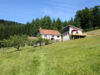 Gîte de Blanche Roche, Cleurie