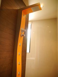 First Floor Family walk-in Shower Room