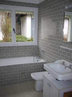 Modern bathroom, shower room and two toliets