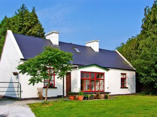 5926 - Gort, The Burren