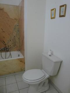 The toilet in the first bathroom