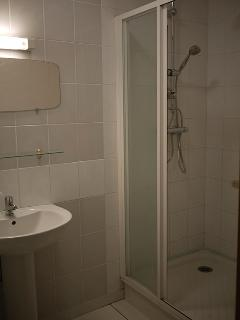 Modern shower room downstairs